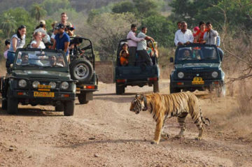 jeep safari adventure kumaon himalayas