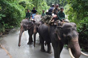 Manas National Park Weekend Getaway