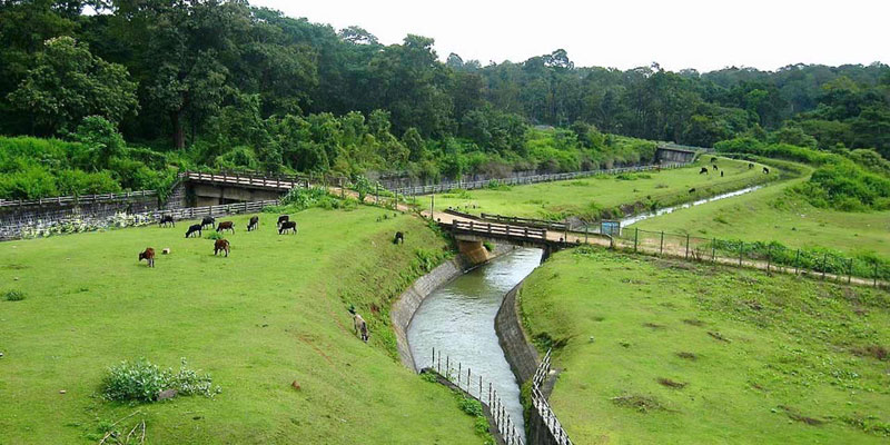 Coorg holidays