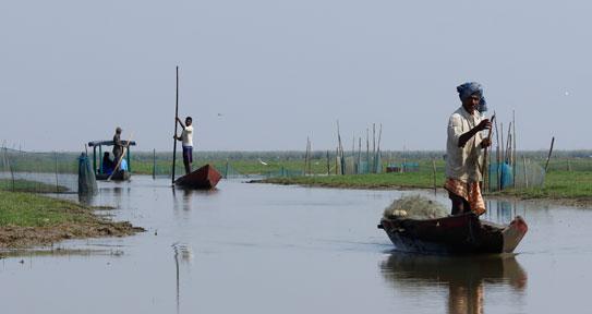 Mangalajodi Boat