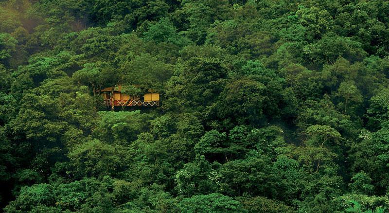Wayand Threehouse