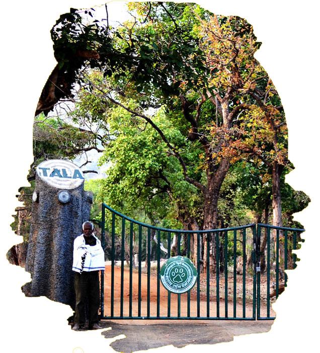 Tala-Zone